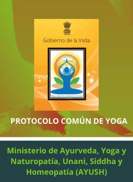 protocolo común yoga