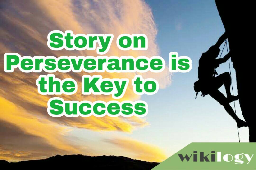 perseverance is the key to success story