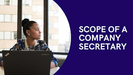 Career as a Company Secretary