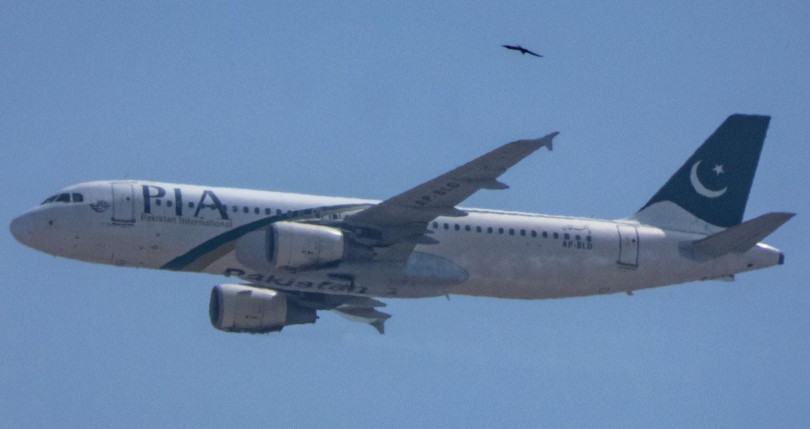 복행 후 파키스탄항공 8303편