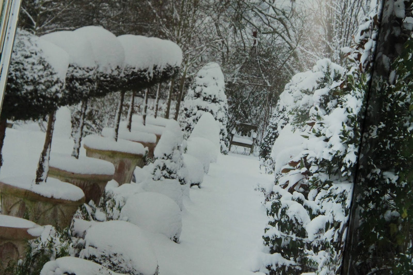 My Secret Garden: Modern Country Style: My Secret Garden By Alan Titchmarsh