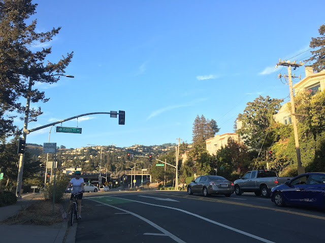 Amber in bike lane on Broadway with Oakland hills behind