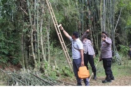 Tebang pohon bambu, lansia asal Magetan meninggal tersengat listrik