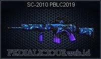 SC-2010 PBLC2019