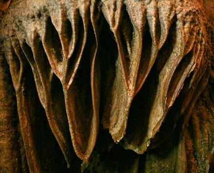 Phong Nha - Ke Bang National Park 32