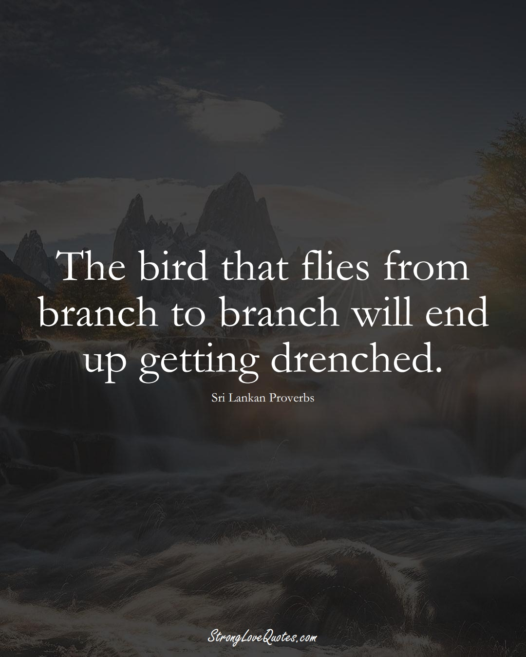 The bird that flies from branch to branch will end up getting drenched. (Sri Lankan Sayings);  #AsianSayings