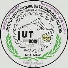 Institut_Universitaire_de_Technologie_du_Bois_(IUT-BOIS)