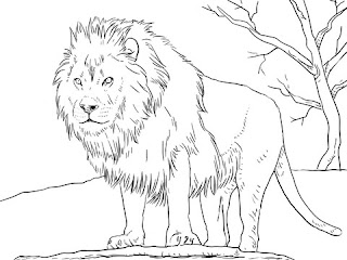 Printable Lion On Jungle Coloring Sheet Online