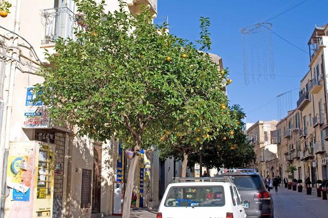 pomarańcze we Włoszech, Sycylia, owoce na ulicy, kiedy zbierać