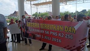 256 CPNS K2 Demo di Pemda Dompu Tuntut SK PNS