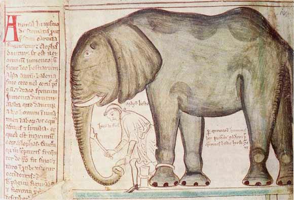 Animales exóticos usados como regalo entre los poderosos; el origen «políticamente incorrecto» del Zoo