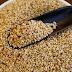 Ανησυχητικά ευρήματα επικίνδυνης χημικής ουσίας σε σουσάμι εισαγωγής και προϊόντα σουσαμιού