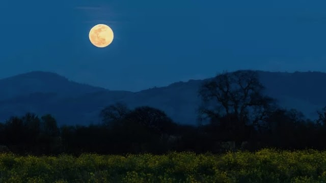 The full super moon in March is a must-see. This Sunday is Worm Moon.