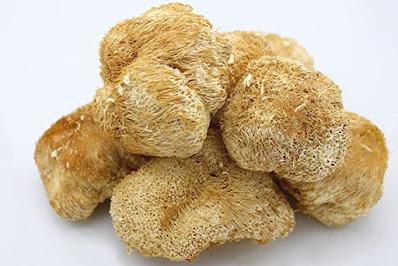 Lion's mane mushroom shop
