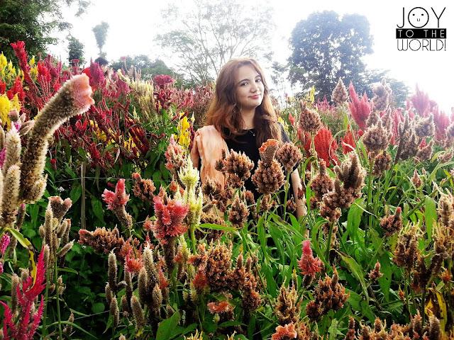 Tourist Spots Cebu