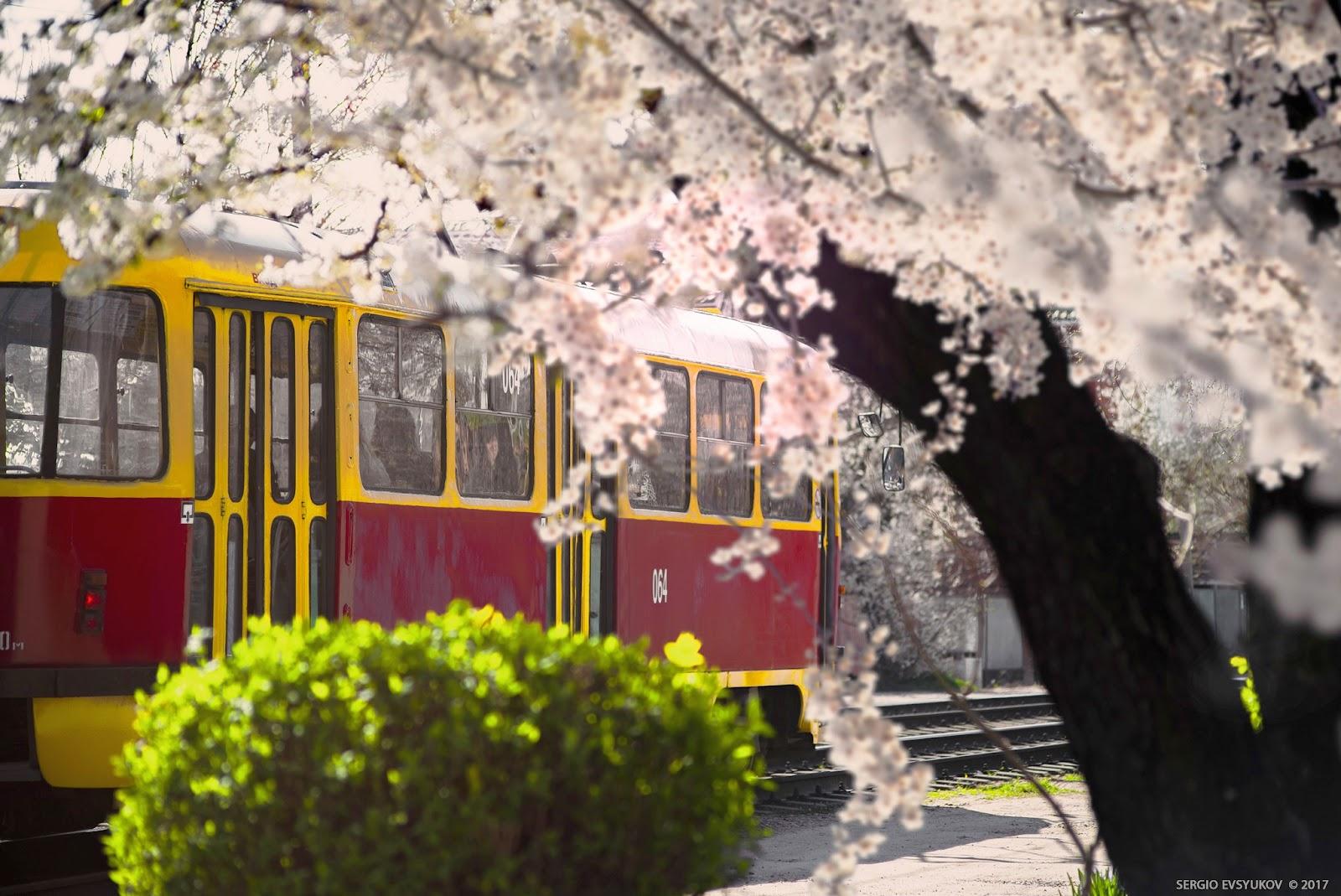 Весенний трамвай