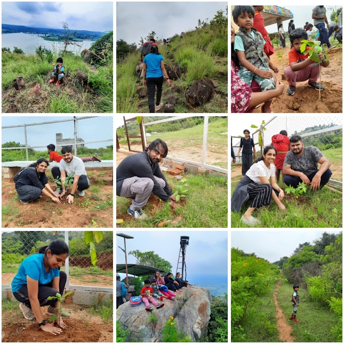 The Green Initiatives of The Law of Nature Group...