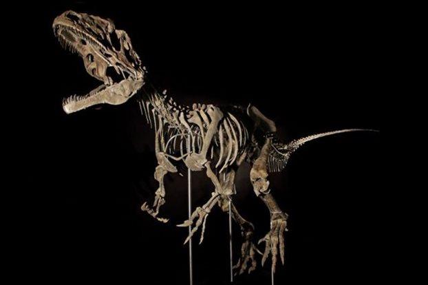 Σκελετός δεινόσαυρου πουλήθηκε έναντι 2,3 εκ. ευρώ σε δημοπρασία