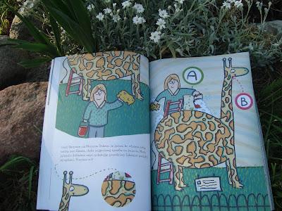 miasto labiryntów, labirynty dla dzieci, książka