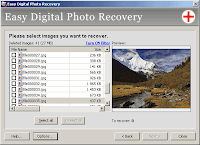 Screenshot showing recoverable files.