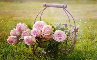 Fiori rosa nella cesta