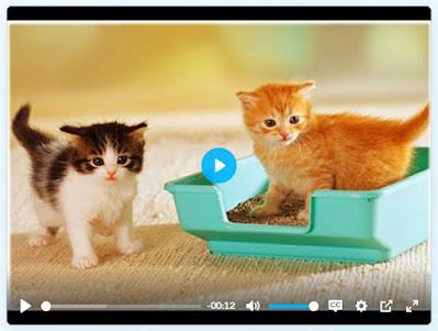 Custom Video Player 01