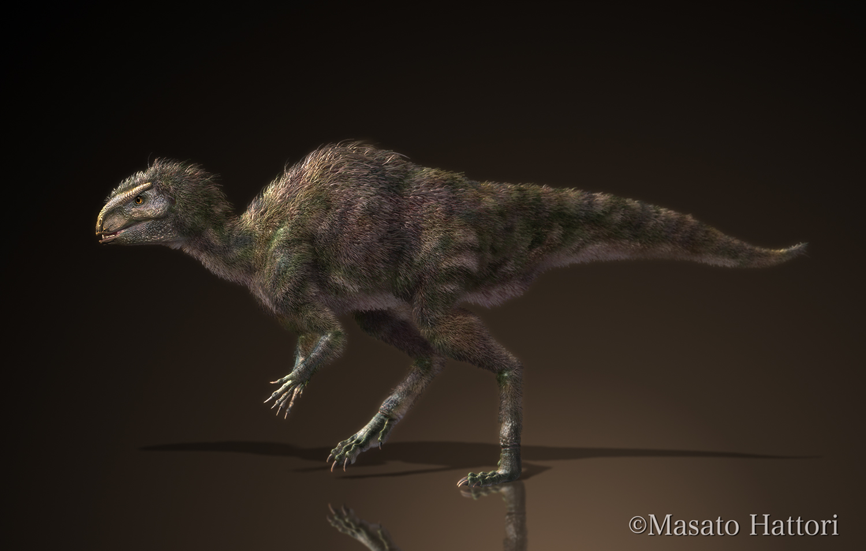 Marchan Blog: ピサノサウルス Pisanosaurus