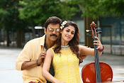 Babu Bangaram Movie New Stills-thumbnail-9