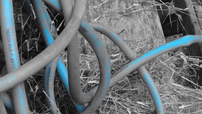 Selang Biru yang usang