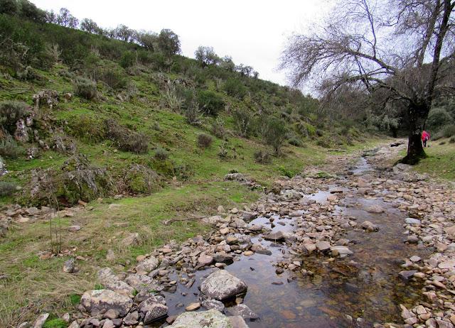 Arroyo de Gargantilla. Cabañeros