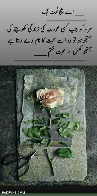 ah notebook fb sad shayari image 6