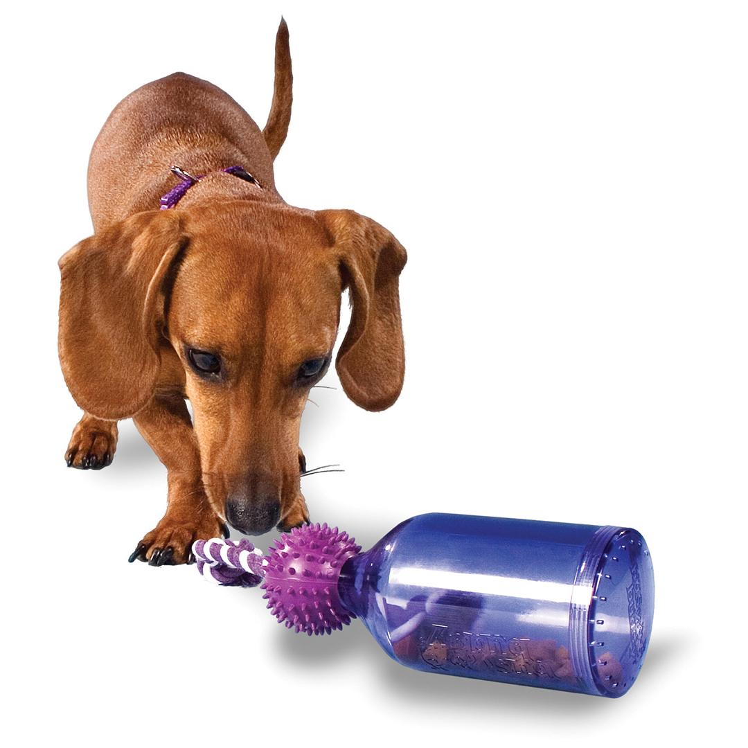 20 Christmas Gift Ideas for your Dogs | Australian Dog Lover