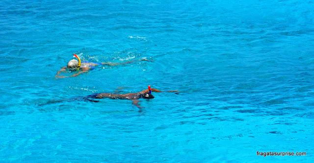 Mergulho de snorkel na Praia de Kanepa Grani (Grote Knip), Curaçao