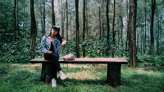 Kursi Kayu  Agro Wisata Sikembang Kembanglangit Blado Batang