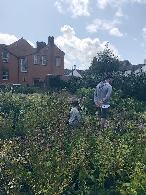 Little boy and daddy wandering in a garden