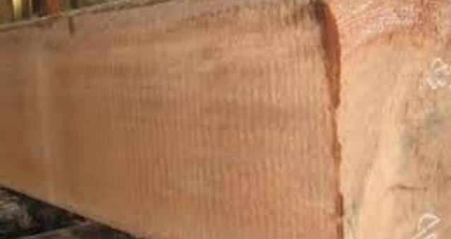karakteristik kayu keruing