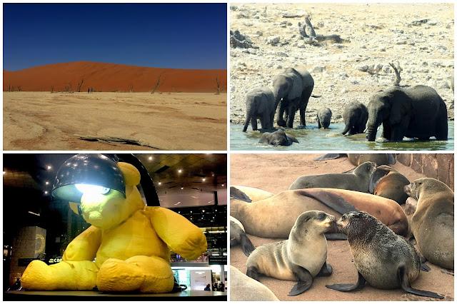 Collage de fotos viaje a África