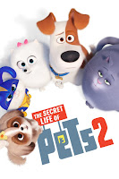The Secret Life of Pets 2 (2019) Dual Audio [Hindi-DD5.1] 1080p BluRay ESubs Download