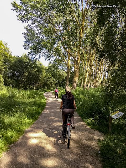 Parque de Salburua en bicicleta