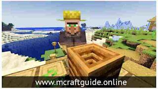 Minecraft villager
