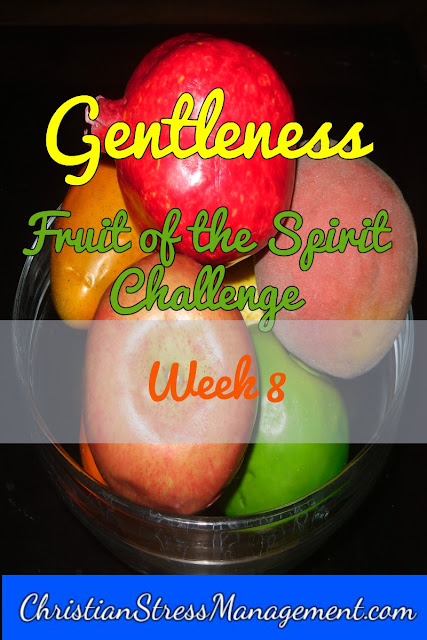 Gentleness Week Fruit of the Spirit Challenge