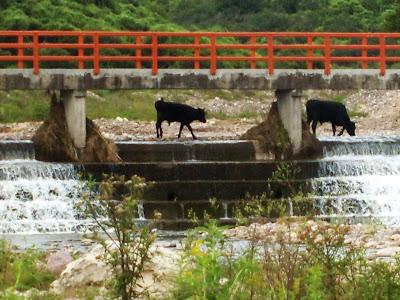 Punto 1 de muestreo Naciente del río Xibi – Xibi en Juan Galán