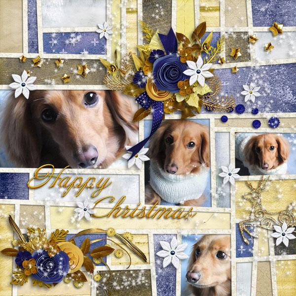 DSB Merry Christmas