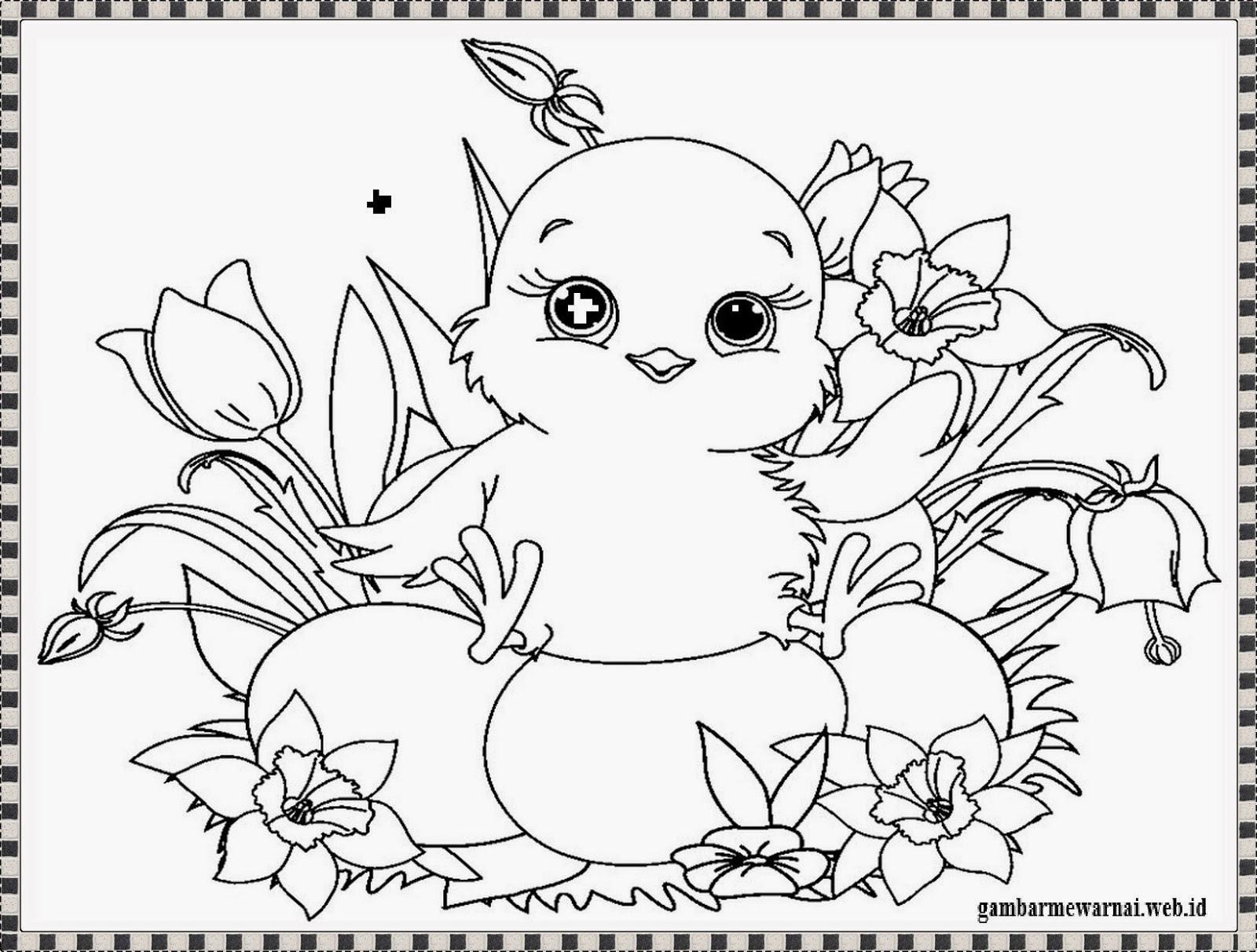 Mewarnai Gambar Anak Ayam Yang Baru Menetas Lucu Loh Amatcardco