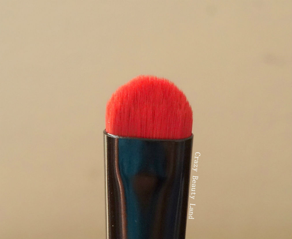 Colorbar Eyelluring Eyeshadow Brush review lotd price