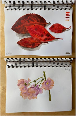 First nature watercolour paintings