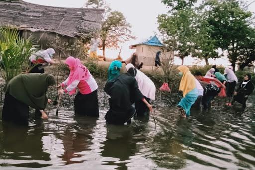 Hari Ozon Sedunia: SPIDI Tanam 1000 Mangrove Rammang Rammang Maros