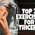 Top  3  exercises  to  build  TRICEPS  |  Anatomy  and  Importance  of  tricep  muscles,  Information  and  more