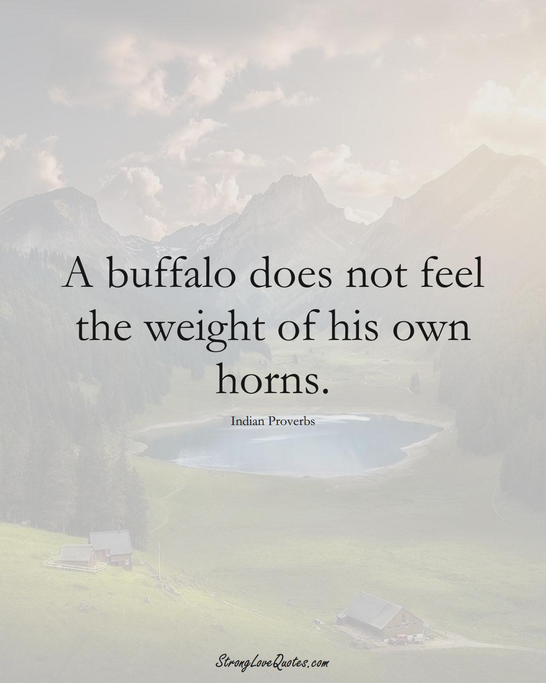 A buffalo does not feel the weight of his own horns. (Indian Sayings);  #AsianSayings