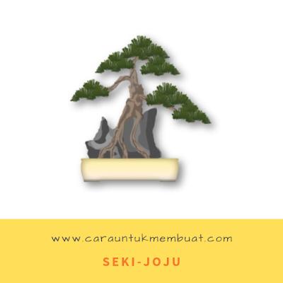 Seki-Joju